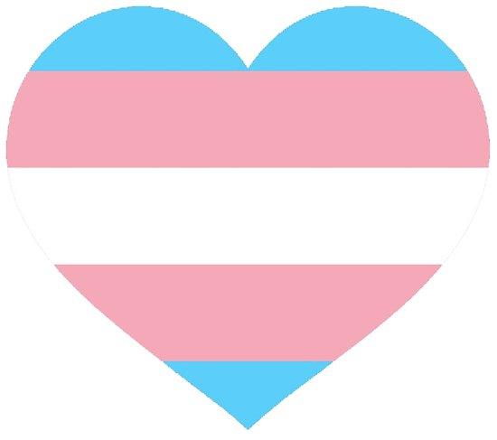 trans heart